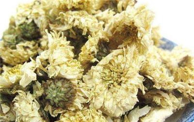 胎菊和贡菊哪个好?胎菊和贡菊的区别有哪些?