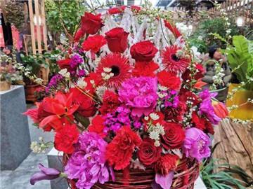 花乡花卉市场